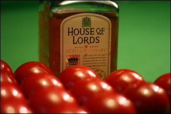 House of Lords Scotch whiskey baize booze, photo comedy_nose (Creative Commons