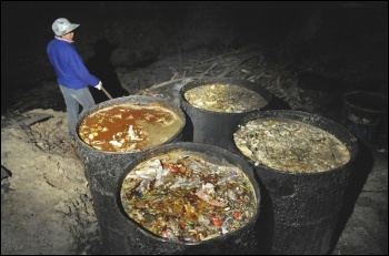 Millions of tonnes of food is destroyed unused every year by capitalism, photo by dgu163 (Creative Commons)