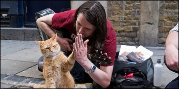 'A Street Cat Named Bob' charts the material and social difficulties faced by a recovering addict
